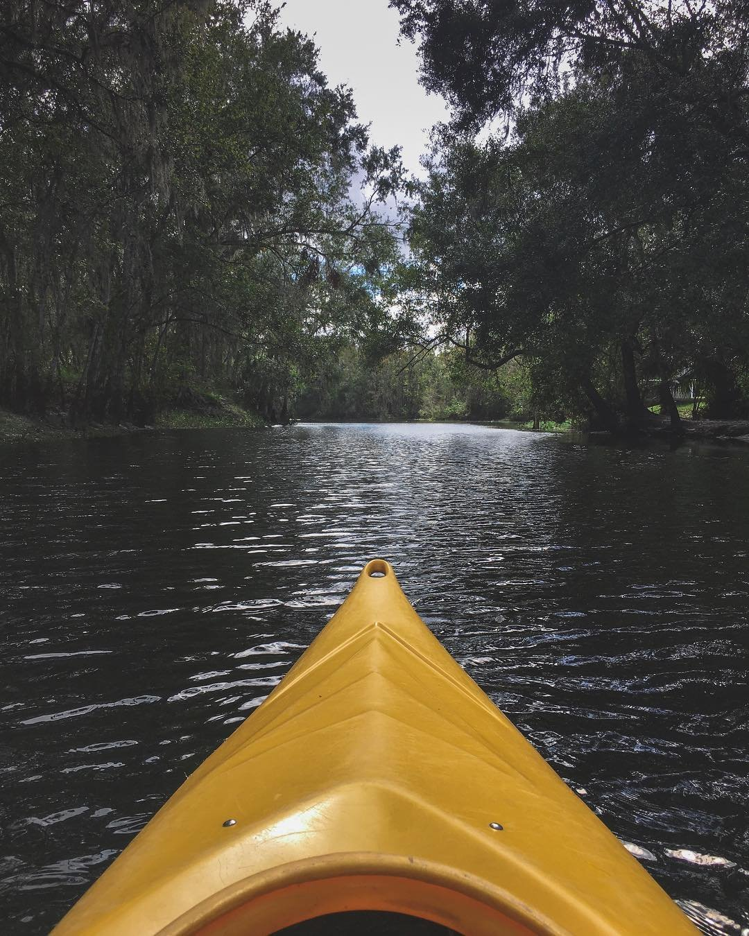 Yellow kayak on a creek in Kissimmee, Florida