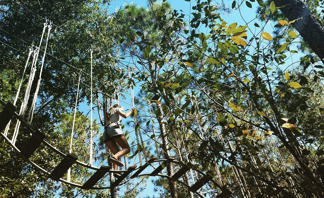A guest makes their way through Orlando Tree Trek Adventure Park
