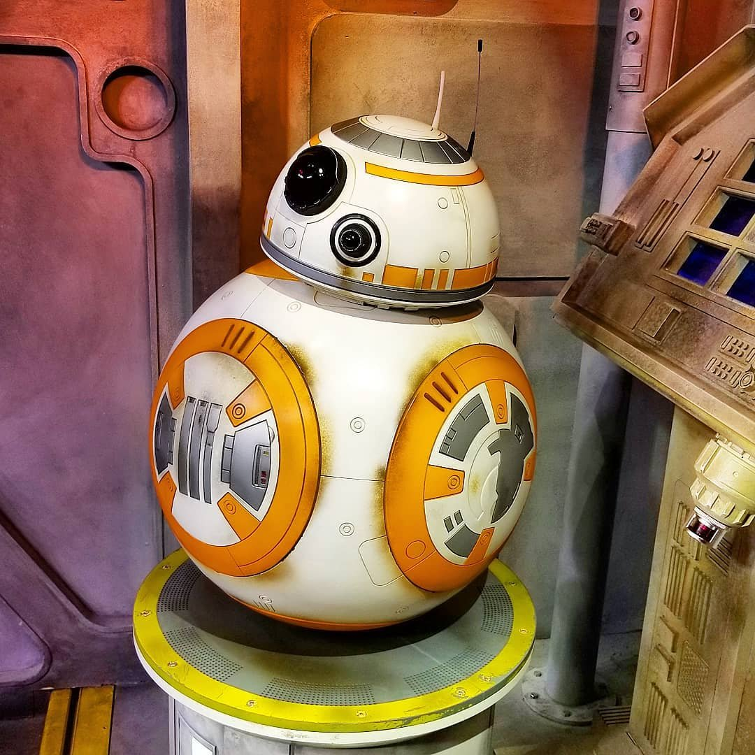 BB-8 greets guests