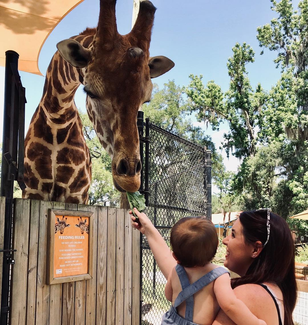 A mother holds her baby as they both feed a giraffe