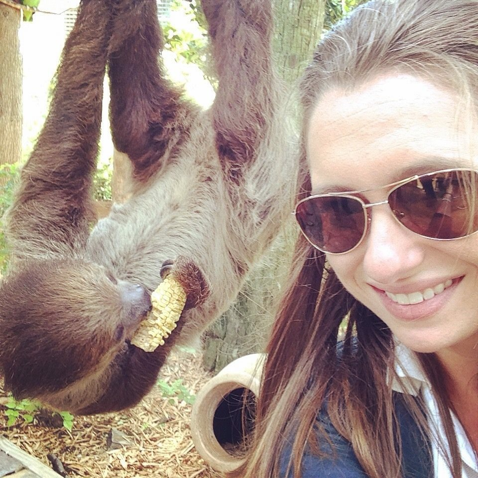 Taking a #slothie (a selfie with a sloth, of course!)