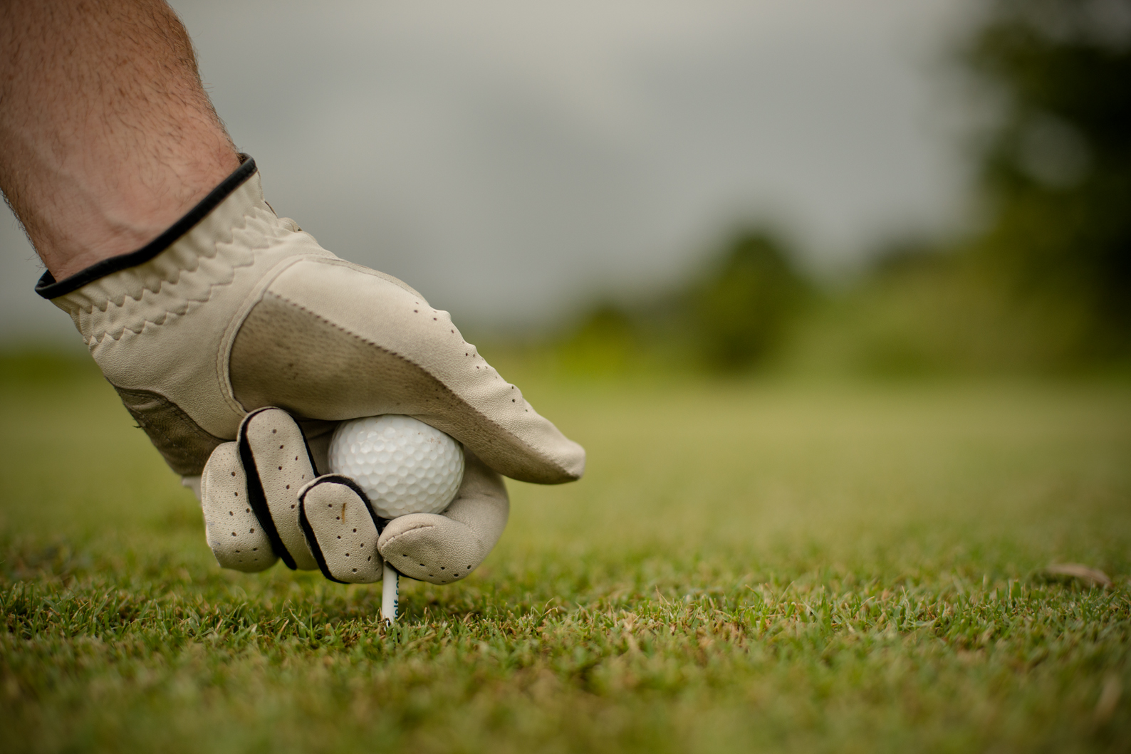 A man sets a golf ball on the tee