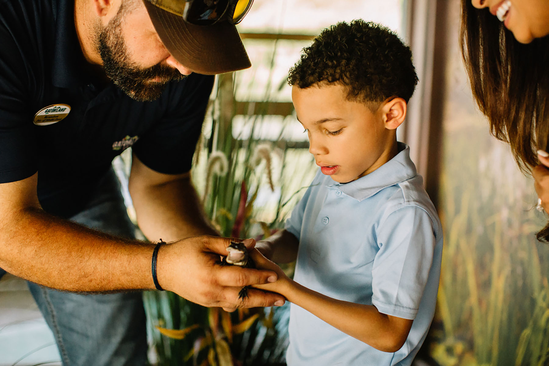 A child holds a little gator at Gatorland