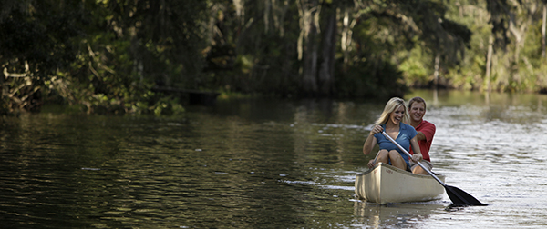 Enjoy exploring Shingle Creek.