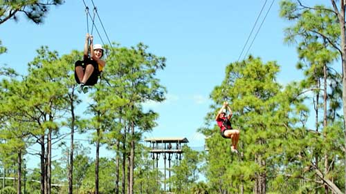 Two people zip lining through trees on a sunny day in Kissimmee, Florida.