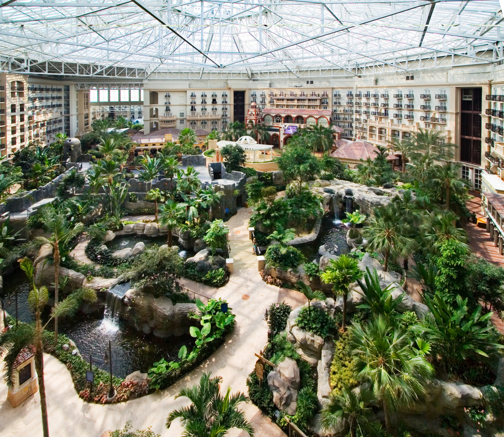 Gaylord Palms Resort And Convention Center Experience