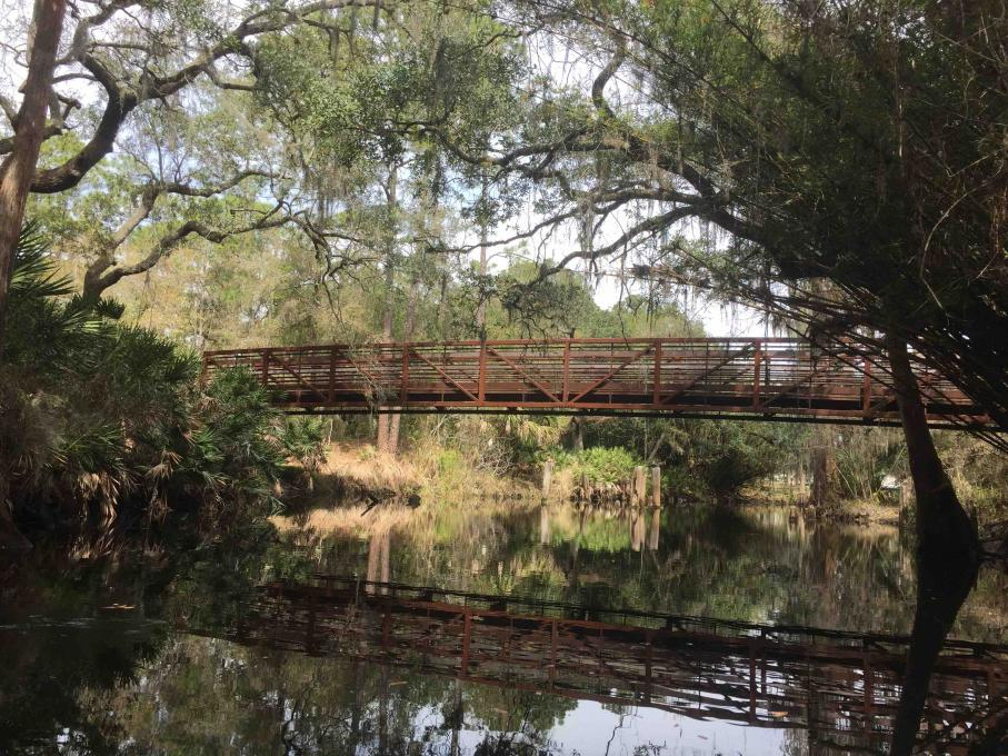 A bridge over Shingle Creek