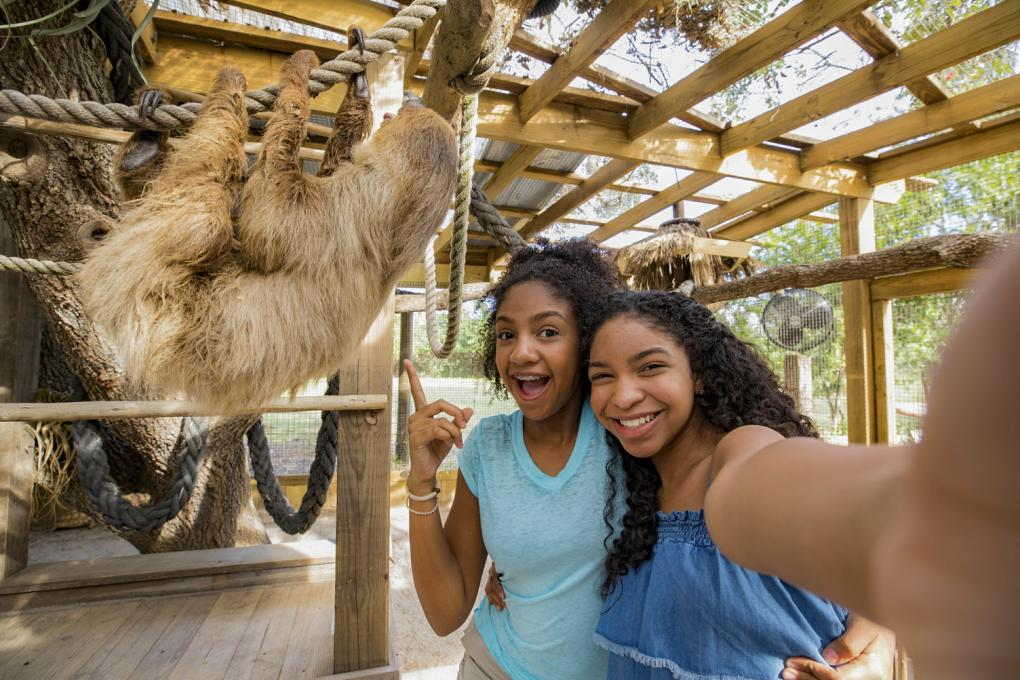 Two girls pose with a sloth at Wild Florida