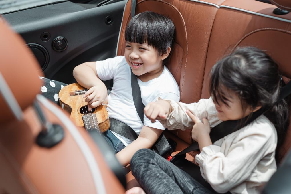 Two children play in the backseat of a car