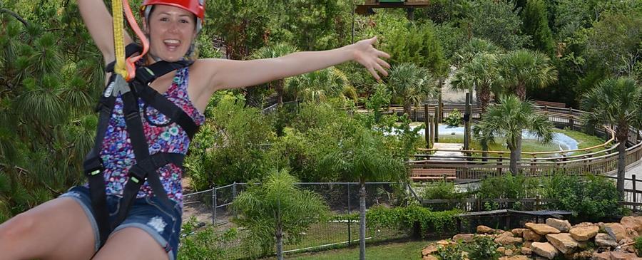 Screamin' Gator Zipline of Alligators