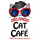 Orlando Cat Cafe - Where The Cool Cats Hang Out