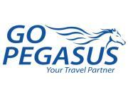 Pegasus - More Than Transportation