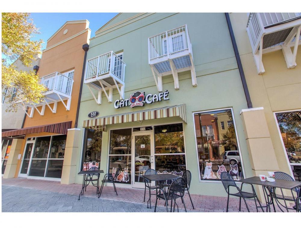 Orlando Cat Cafe - Exterior Picture