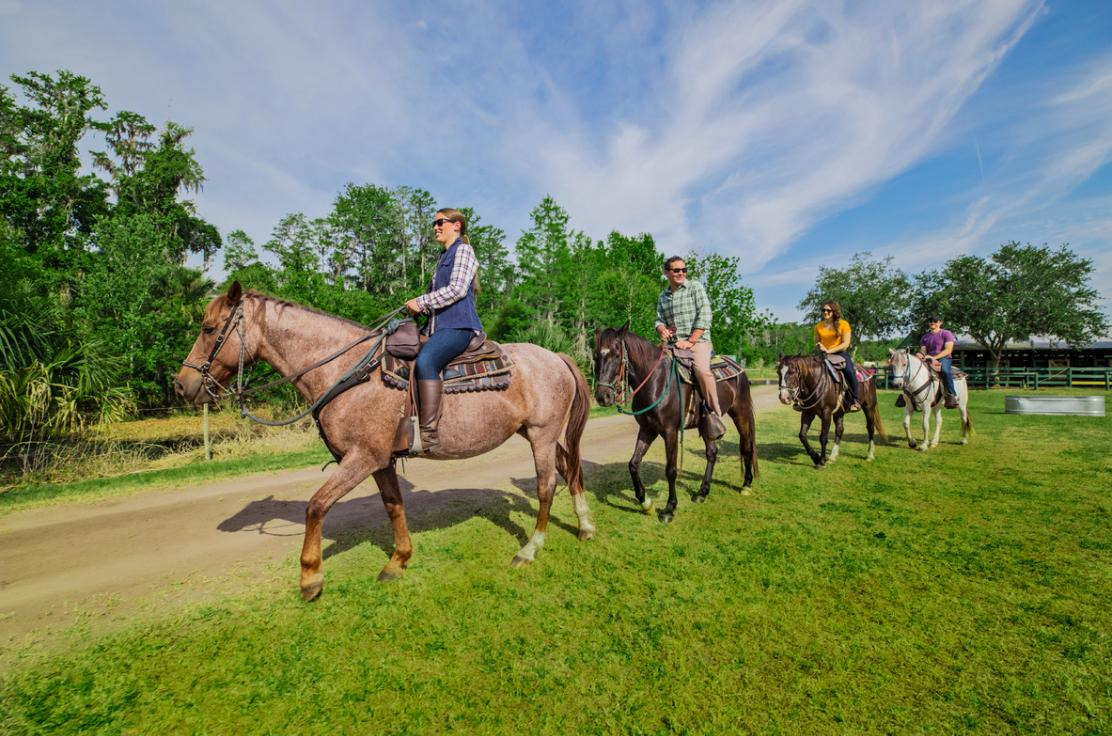 riding horses in a group