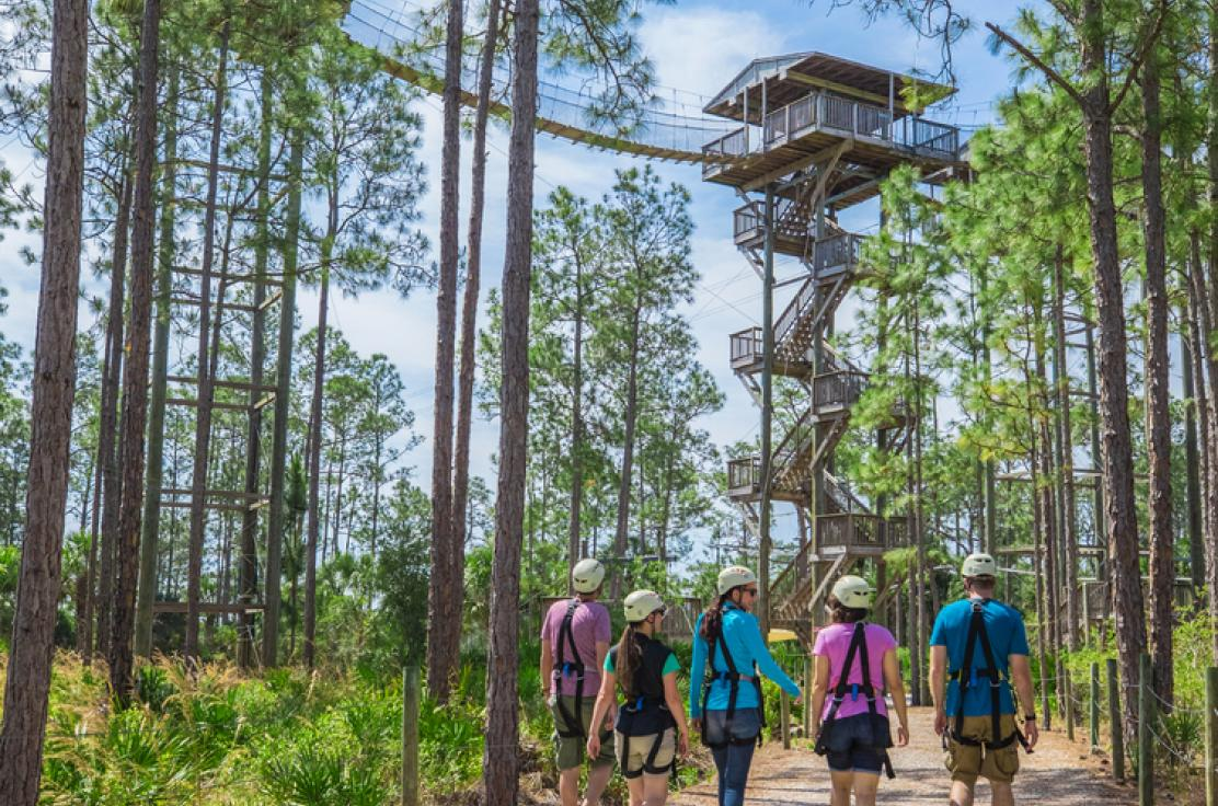 people walking up to the start of a outdoor adventure park