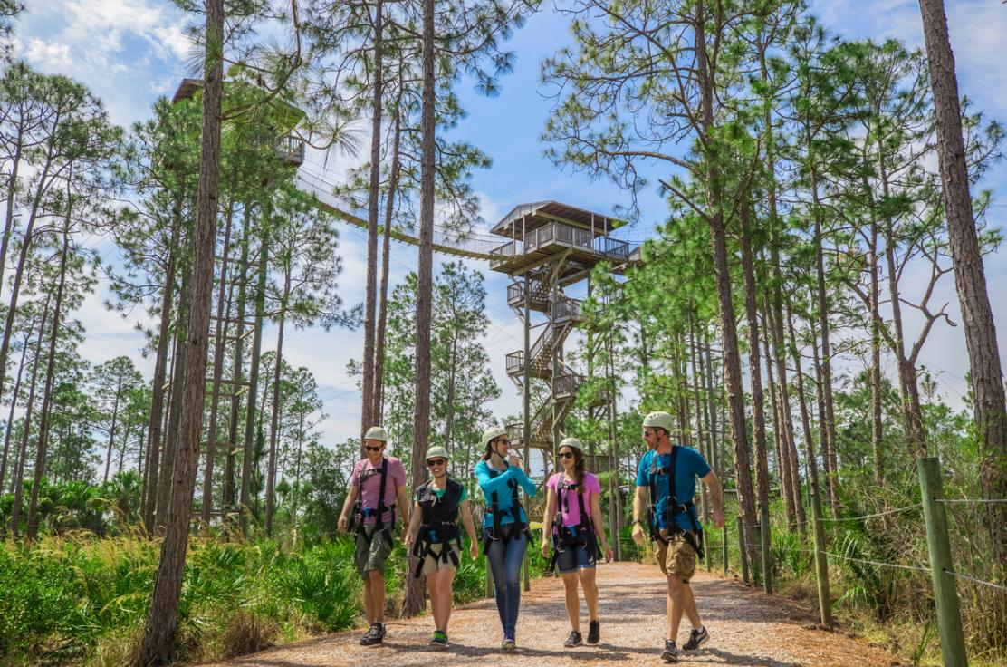 people walking up to an aerial adventure park