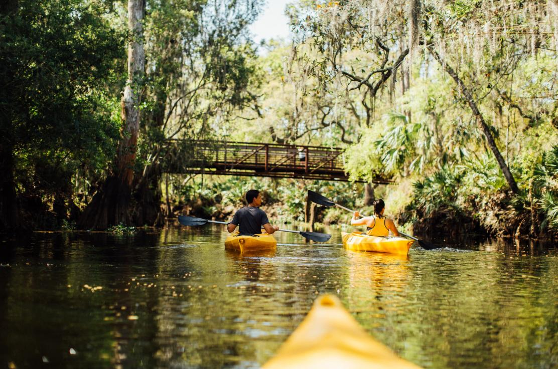 Experience Nature in it's environment while kayaking along Shingle Creek. Central Florida's closest Kayaking destination to Disney.