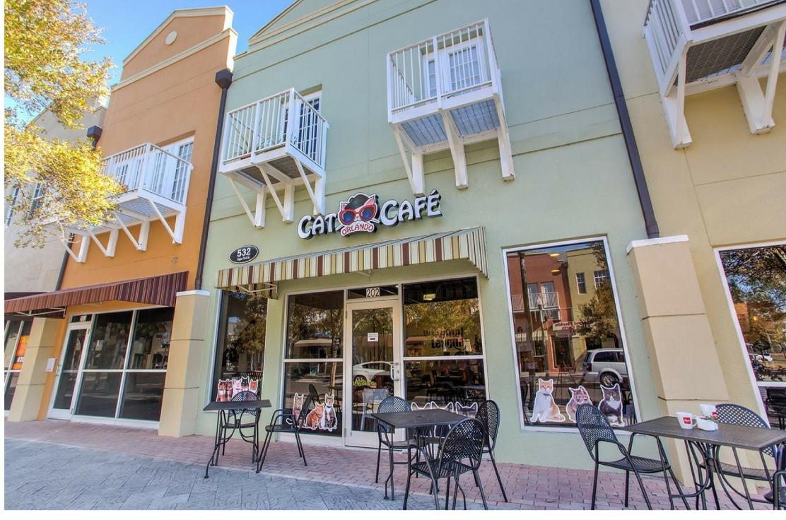 Exterior Picture of Orlando Cat Cafe
