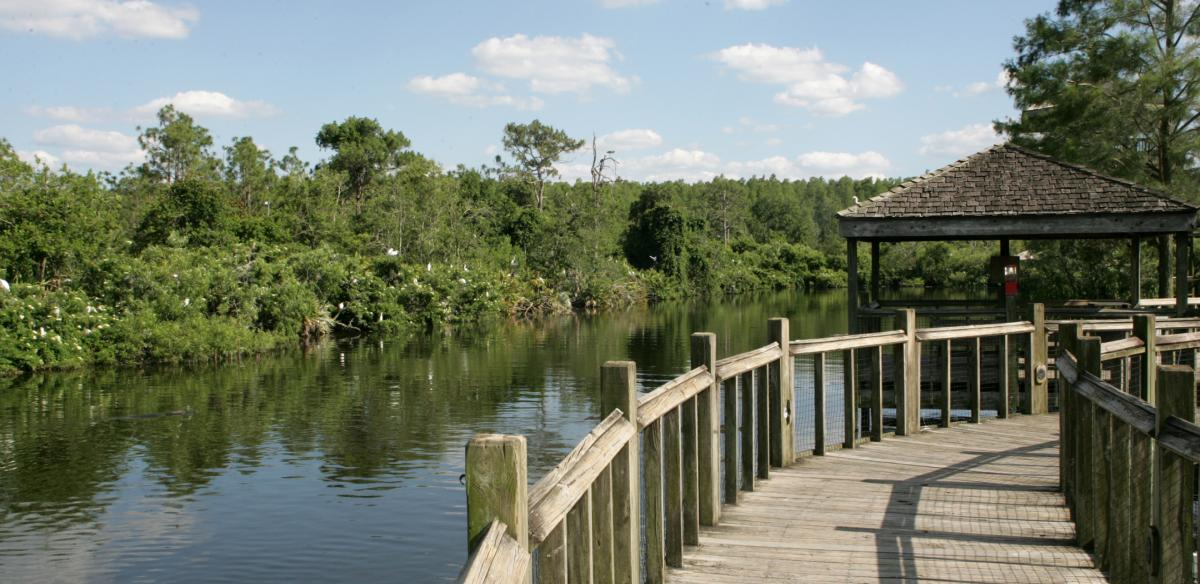 A bridge overlooking a lake in Gatorland
