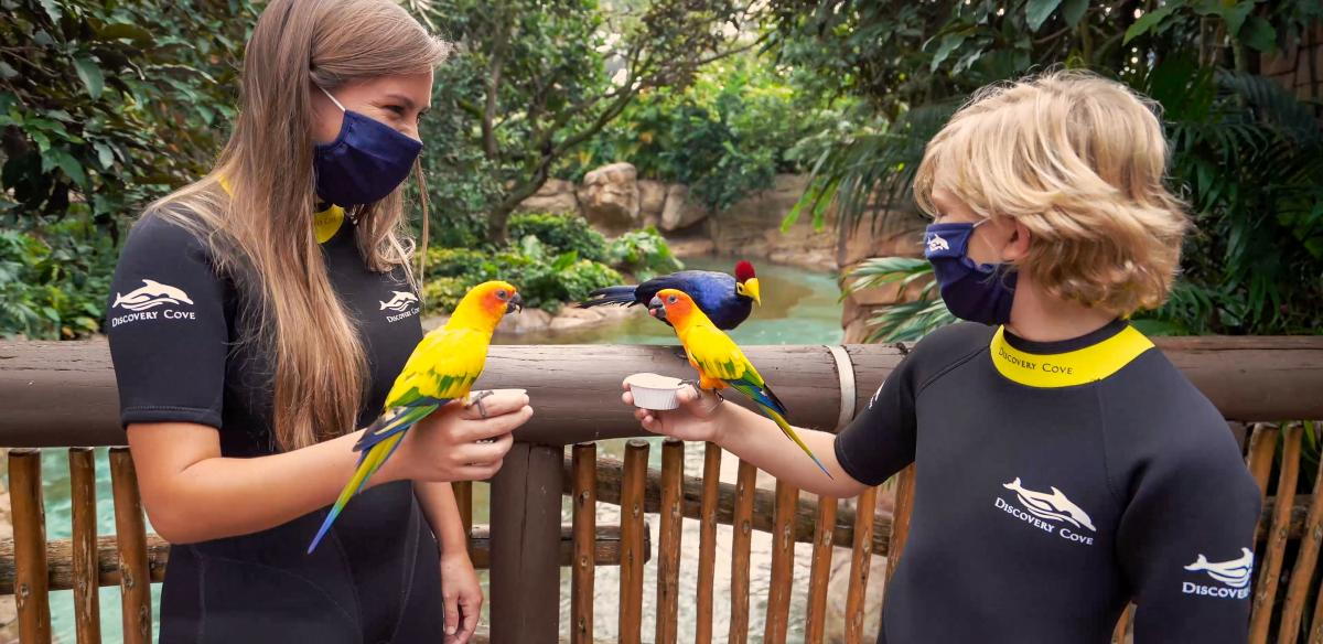 Two people feed birds at Discovery Cove