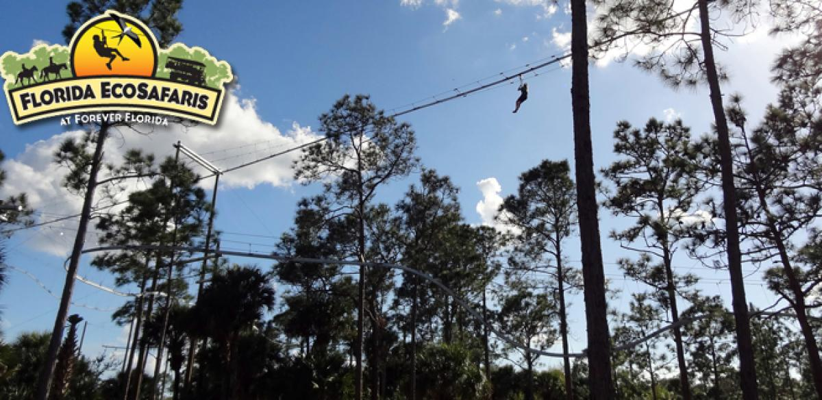 A massive zipline course winds through the trees in Kissimmee.