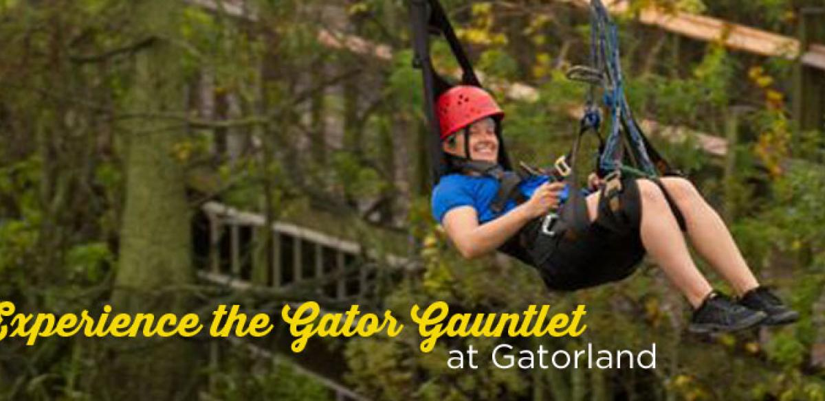 A man on a zipline and text that reads: