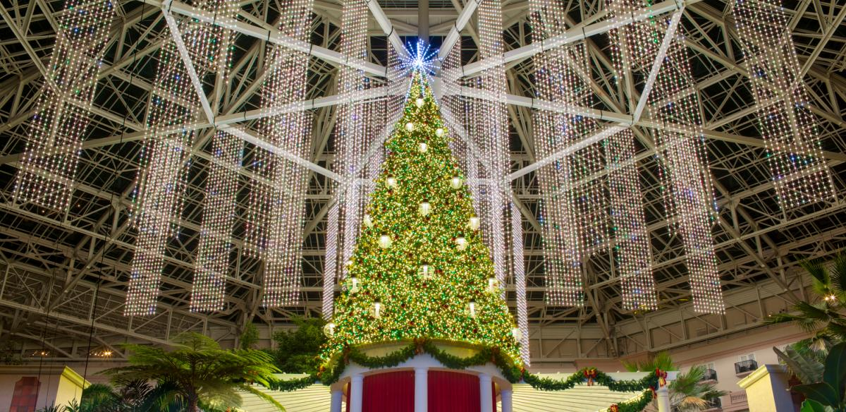 Christmas tree in the Gaylord Palms Resort