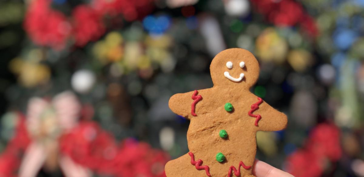 A hand holding gingerbread man against the Christmas tree