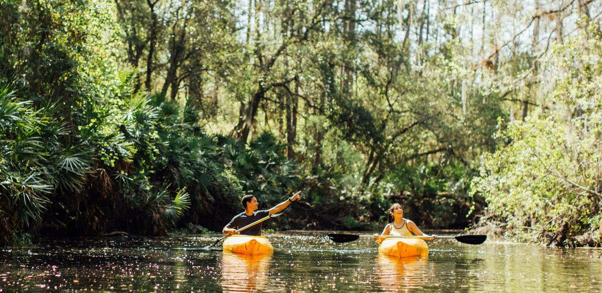 How To Celebrate Earth Day in Kissimmee, Florida