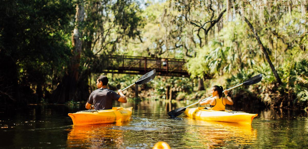 Kayakers in Kissimmee Florida