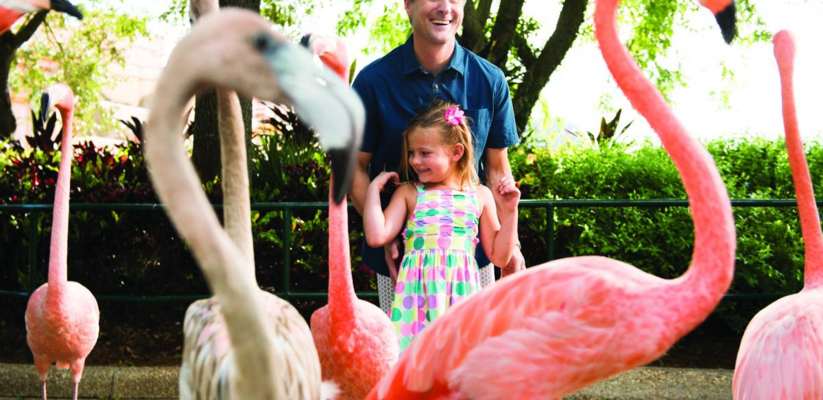 Itinerary: 36 Hours of Family Fun in Kissimmee, Florida