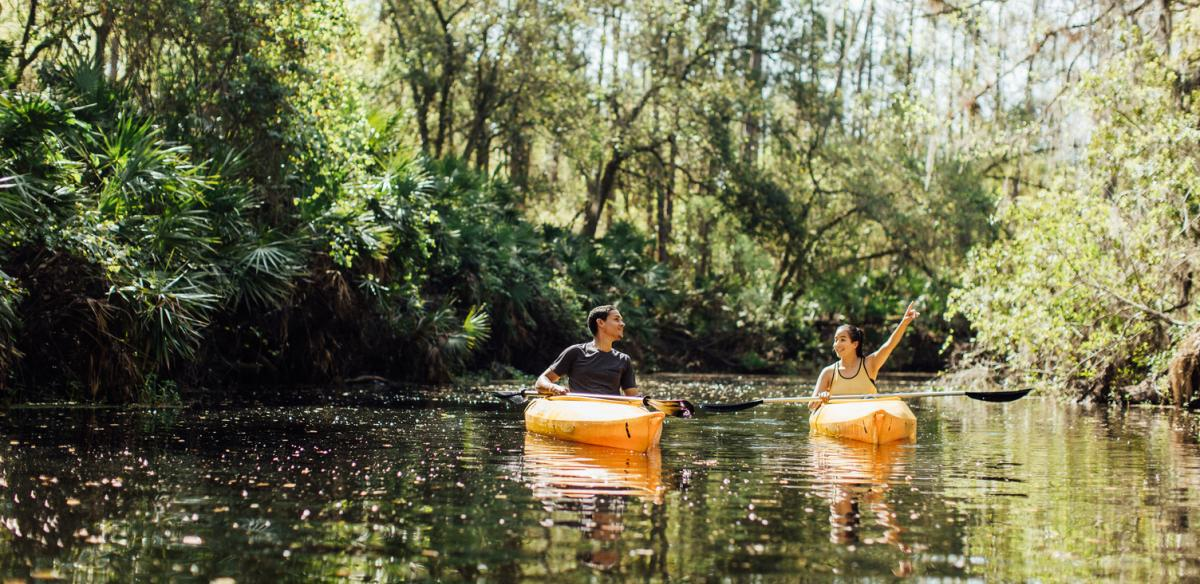 Two people canoeing down a river, surrounded by trees