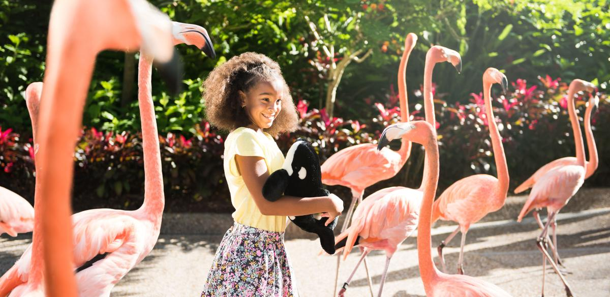 Girl with Flamingos