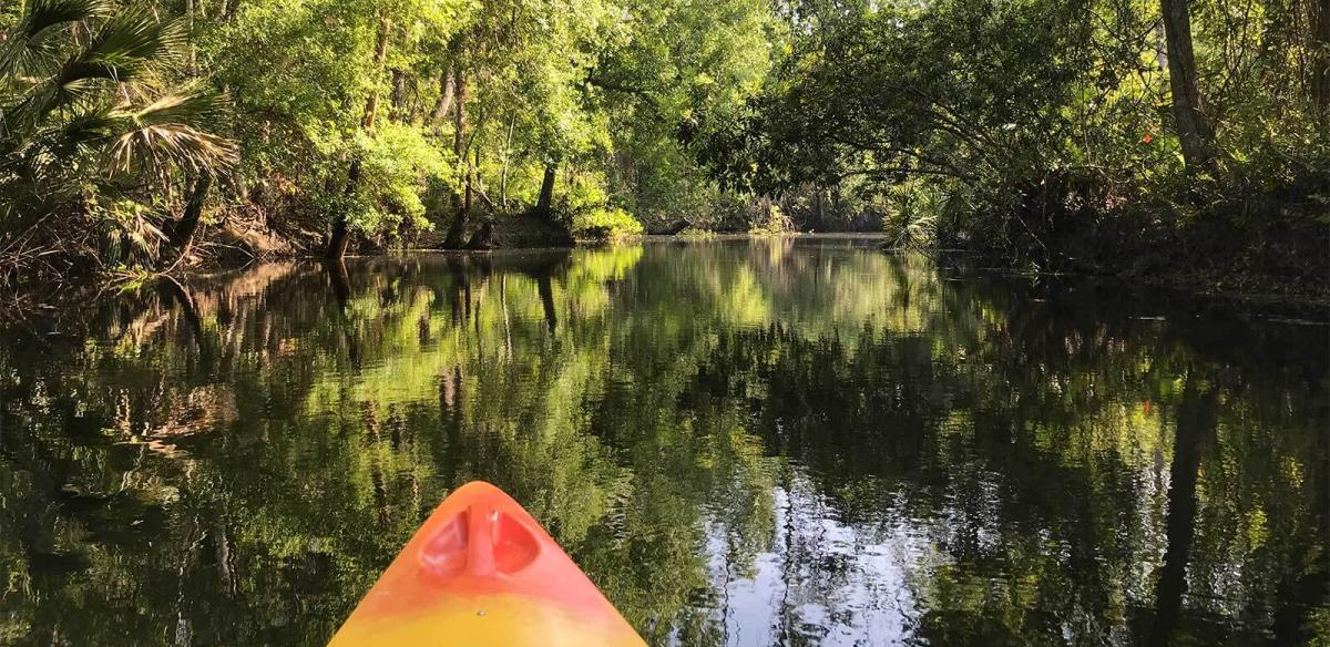 Bow of a kayak gliding through the still waters of Shingle Creek under the cover of an oak and cypress canopy in Kissimmee, Florida